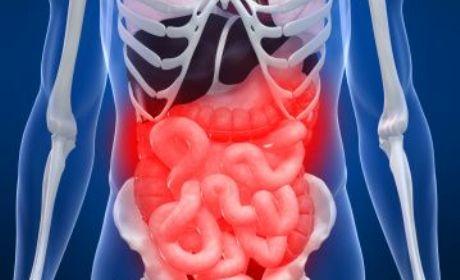kesehatan perut dan pencernaan